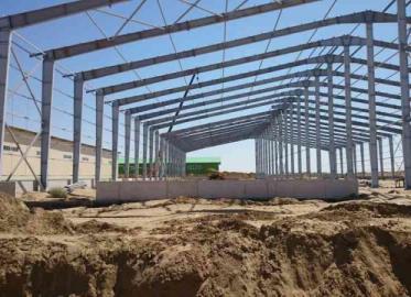 Turkmenistan project